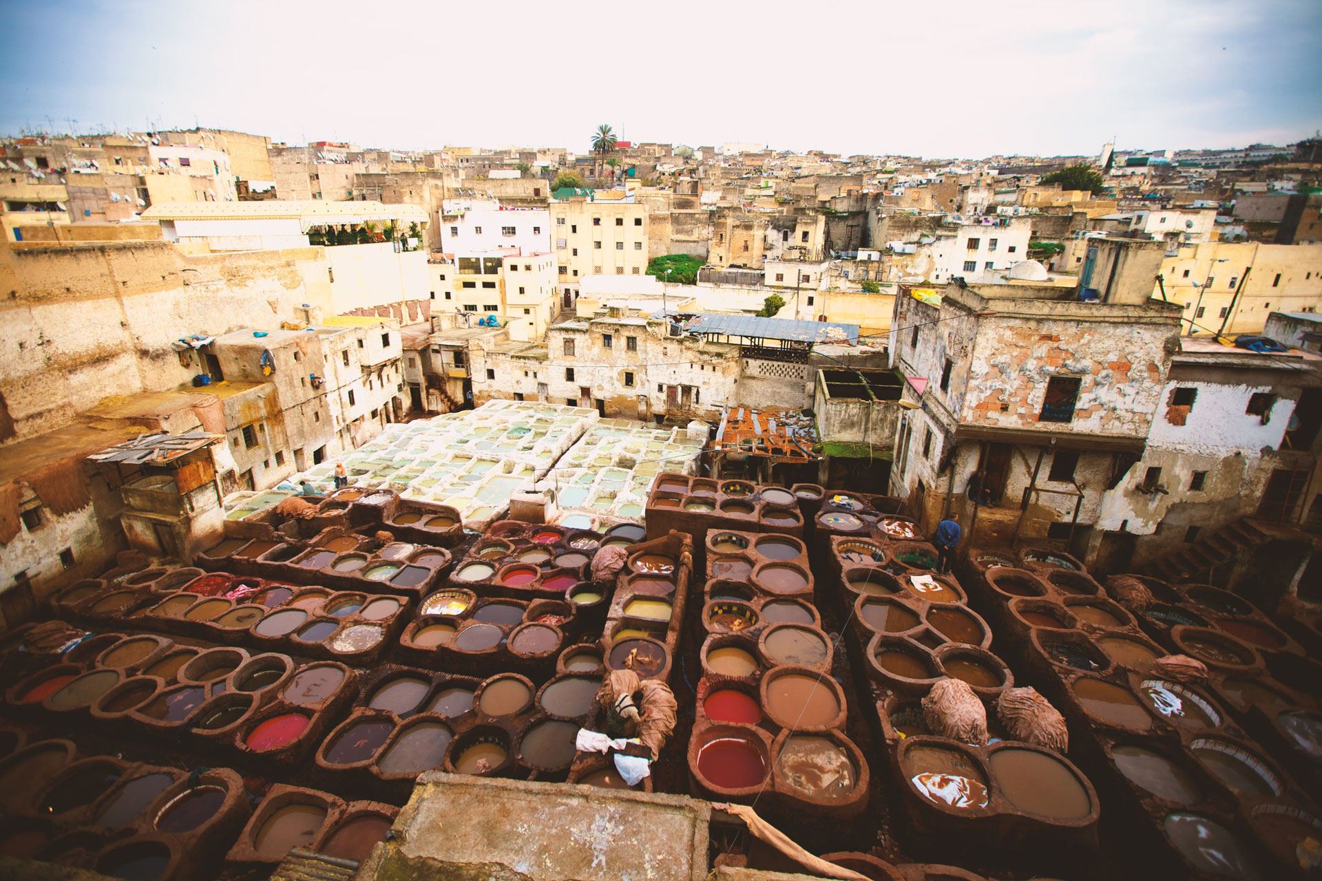 The Medina of Fez-Morocco-wolfare